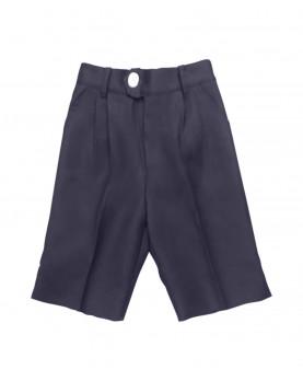 Shorts Tintin